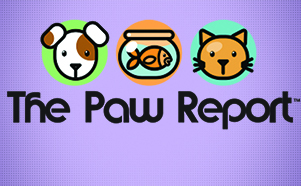 The Paw Report